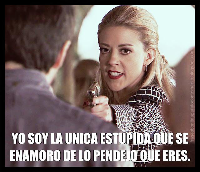-Mónica Robles en El Señor de los Cielos.