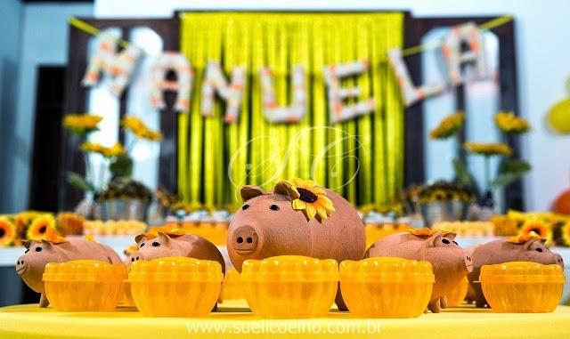 suelicoelho-festas-personalizadas-sãoluis-ma