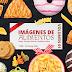 EcoRecurso: Imágenes de alimentos en alta resolución (PSD y PNG) - Volumen 1