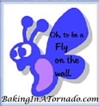 Fly on the Wall, a multi-blogger writing challenge | www.BakingInATornado.com | #MyGraphics