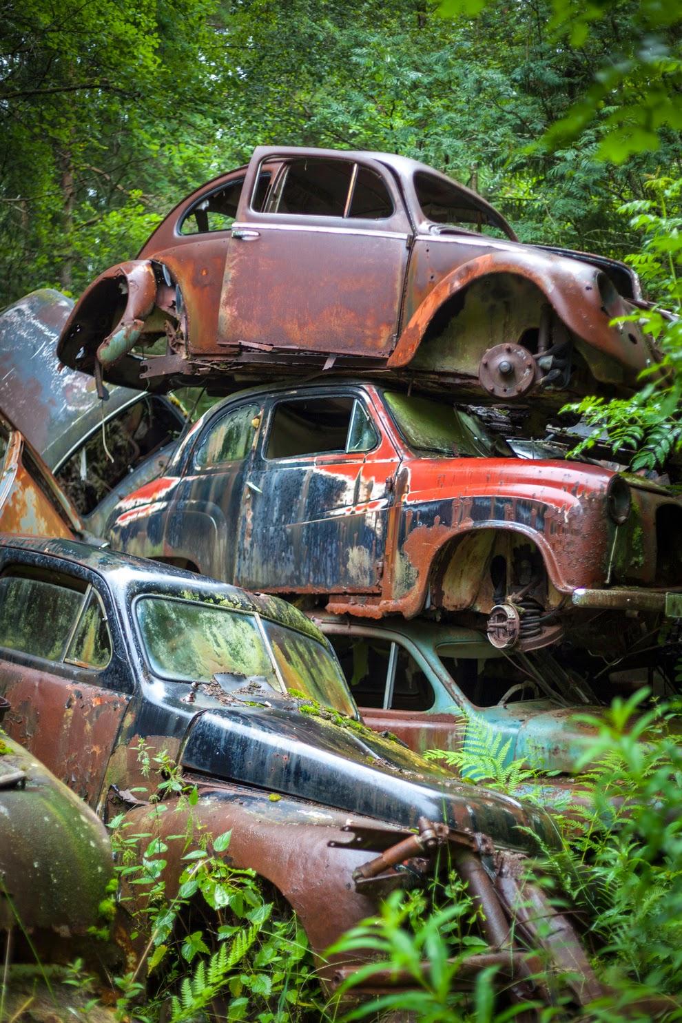 Pictorial Sweden S Forgotten Cars Thegentlemanracer Com