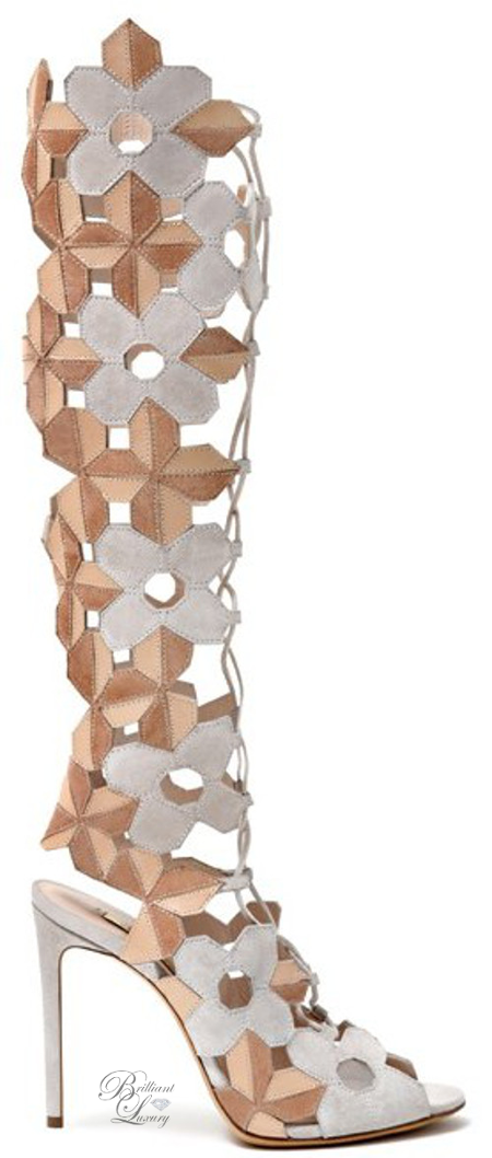 Brilliant Luxury ♦ Casadei Laser-cut suede and leather boots
