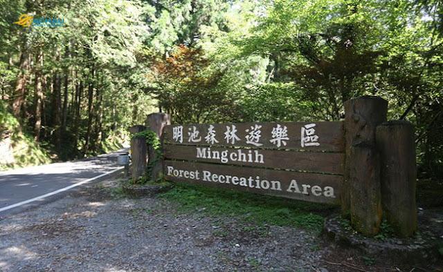Khám phá khu rừng đẹp nhất ở Đài Loan