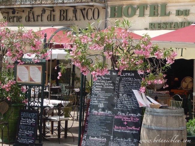 avignon-france-outdoor-restaurant