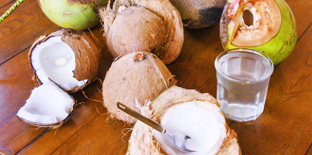 cara membuat pupuk organik cair dari air kelapa