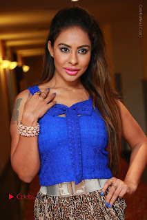 Telugu Actress Srilekha Reddy Latest HD Pos in Sleeveless Blue Top at Muse Art Gallery  0011.JPG
