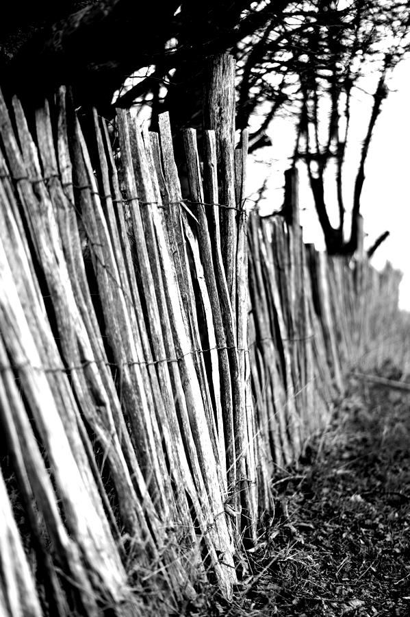 Blog + Fotografie by it's me! - fim.works - Magische Mottos - Strukturen & Rhythmen - SchwarzWeissBlick No 2 - Staketenzaun