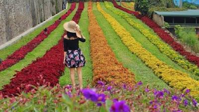 Lokasi Rainbow Garden Lembang Bandung