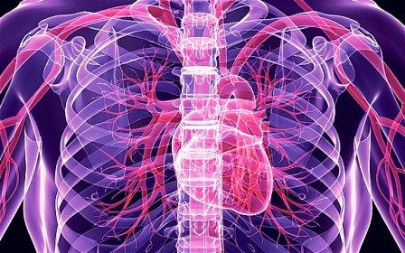 golongan darah dan kesehatan jantung