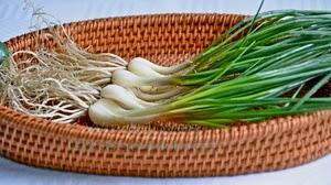 manfaat-bawang-lokio-bagi-kesehatan,www.healthnote25.com