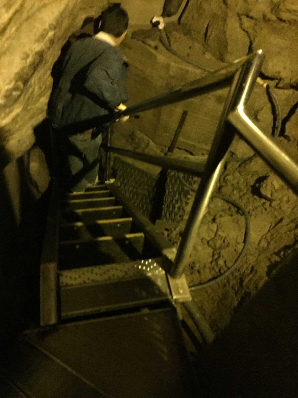 Mammoth Cave Tours Prebook