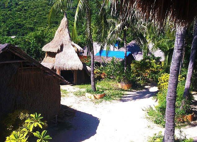 jungle beach homestay