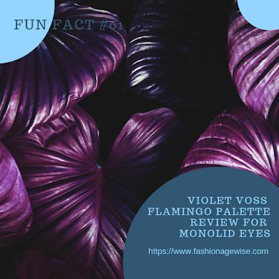 image result Violet Voss Flamingo Palette Review For Monolid Eyes