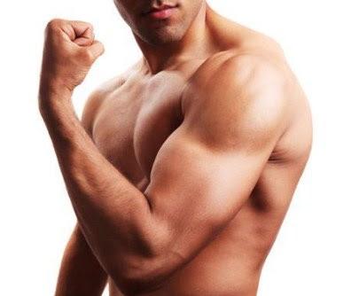 5 Makanan Yang Membantu Memperkuat Otot Lean Tanpa  Ada Resiko