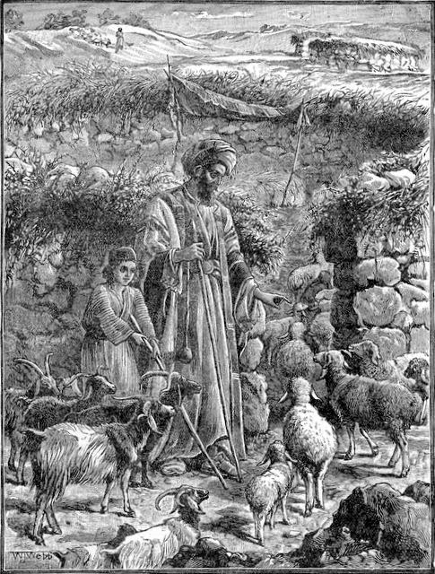 """Separating Sheep from Goats""  (Matthew 25:32) from Treasures of the Bible"