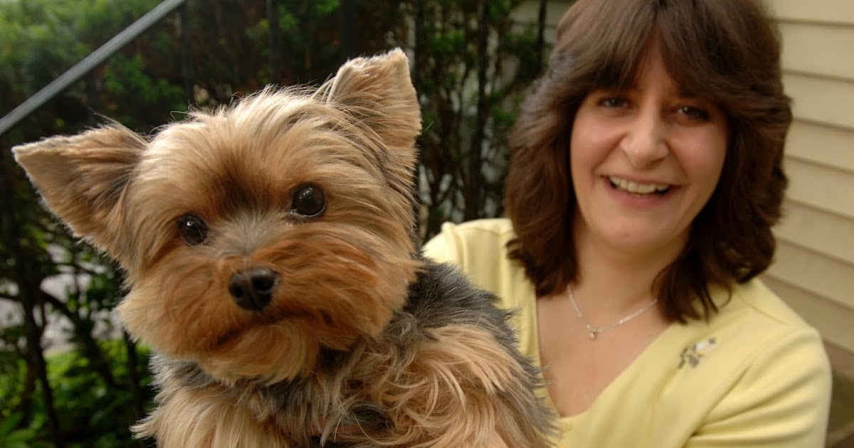 Writer's Corner: Life, Love and Romance: A Dog's Perspective