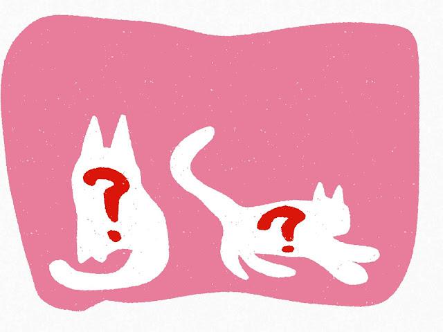 猫の絵を描く心理テスト