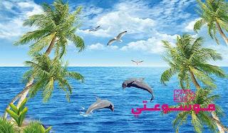 تفسيـر رؤيـة المحيط أو البحـر في الحلم بالتفصيل