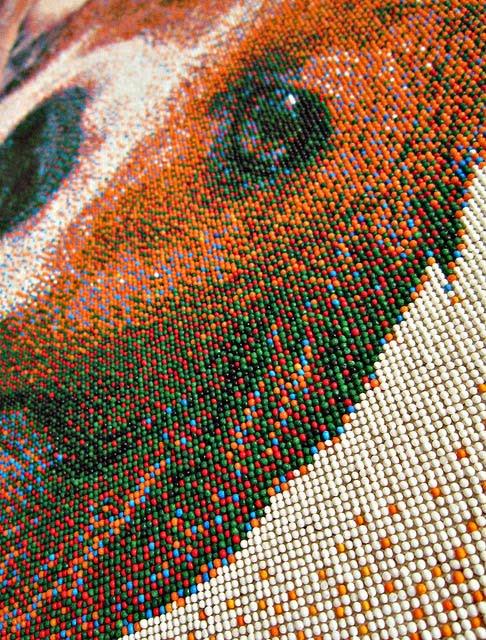beagle candy portrait close-up