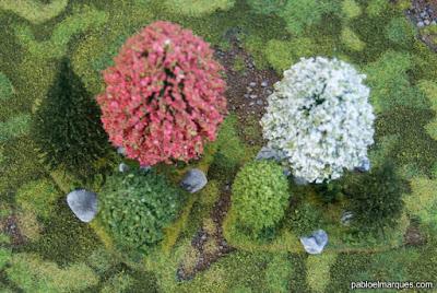 Arboles: Bosque primavera