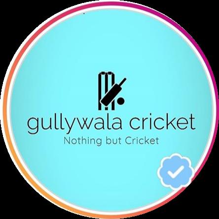 gully cricket