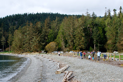 Restored Beach and Shoreline at Bowman Bay