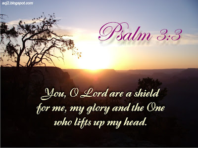 the Lord my shield