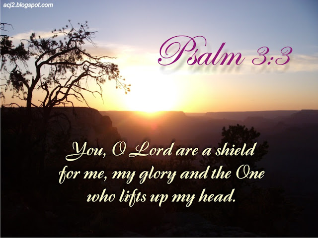 Image result for psalm 3:3
