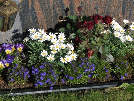 Planter til gravsted