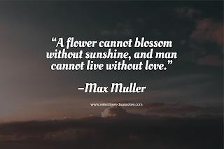 Buy-valentines-Day-flowers