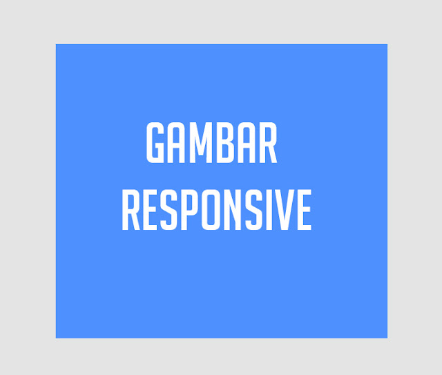 Cara Membuat Gambar Responsive dengan Kode CSS di Blog