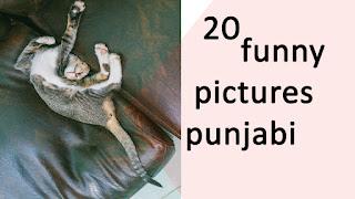punjabi funny pic new | punjabi funny questions images