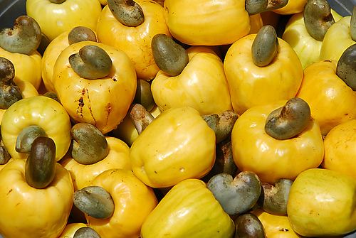 Image result for benefits of cashew nuts