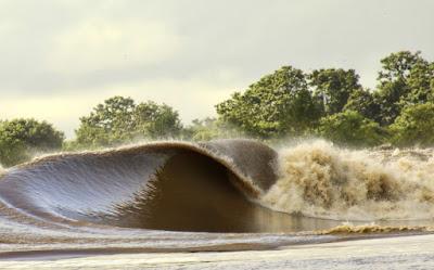 Pororoca - Manaus