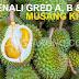 Kenali Gred A, B, & C Durian Musang King (Raja Kunyit) Supaya Tidak Tertipu Dengan Harga Yang Mahal