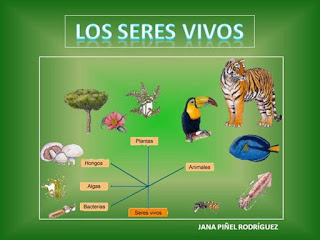 http://www.primaria.librosvivos.net/actividades/flashActividadesPrimariaPub/examen.swf?idejecucion=5000