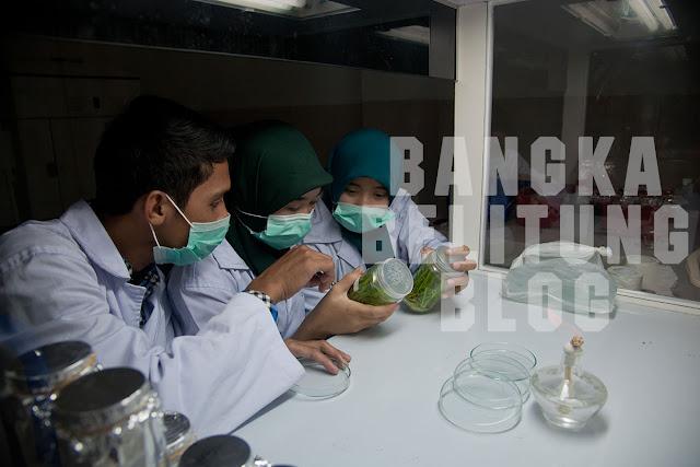 mahasiswa-ubb-praktik-di-lab-biologi
