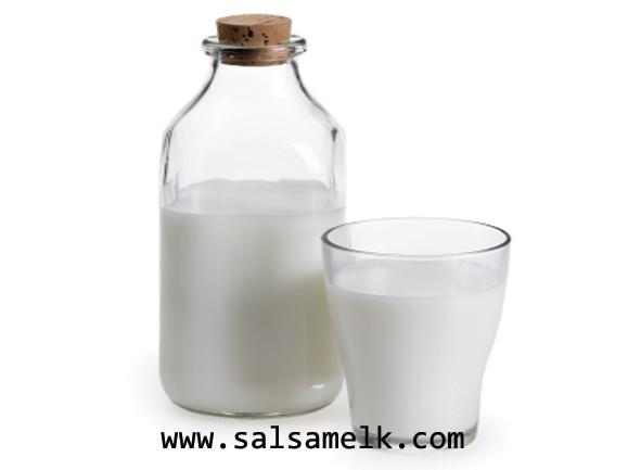susu kambing etawa salsa melk