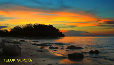 Teluk Gurita