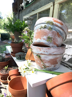 Easy DIY to make new clay pots look like aged vintage pieces.