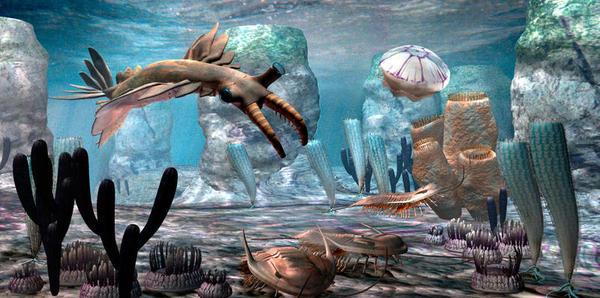 El posible cambio de los polos magnéticos habría hecho posible que surjan nuevas especies marinas, como el Anomalocarididae, que podemos ver en la parte superior izquierda de la imagen (el animal de mayor tamaño).