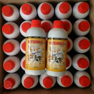 vitamin penambah nafsu makan babi viterna 087747838108