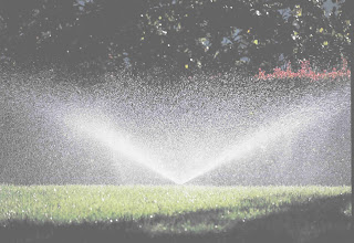 Saving water with a sprinkler system