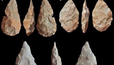 Fosil Tengkorak Manusia Purba ditemukan di Portugal
