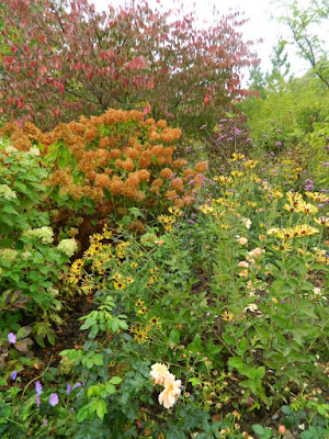 Autumn border at the Toronto Botanical Garden by garden muses-not another Toronto gardening blog