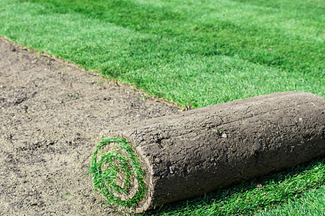 Reasons Behindchoosing To Install Cheap Artificial Grass