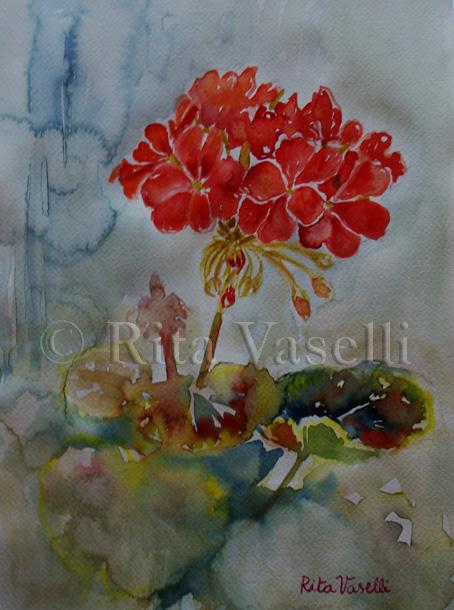 Rita Vaselli watercolors FIORI ROSSI