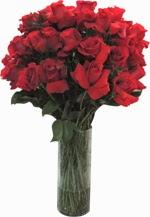 Flores Amor e Romance