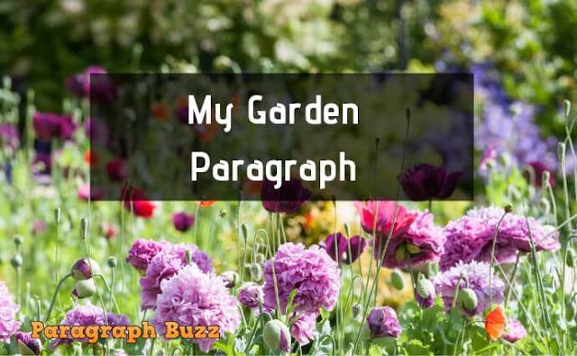 My Garden Paragraph