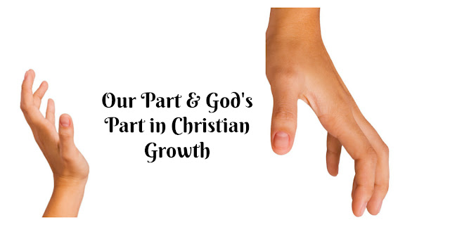 We Can't Ignore Our Role in Christian Maturity - 2 Thessalonians 1, Philippians 2:12-13